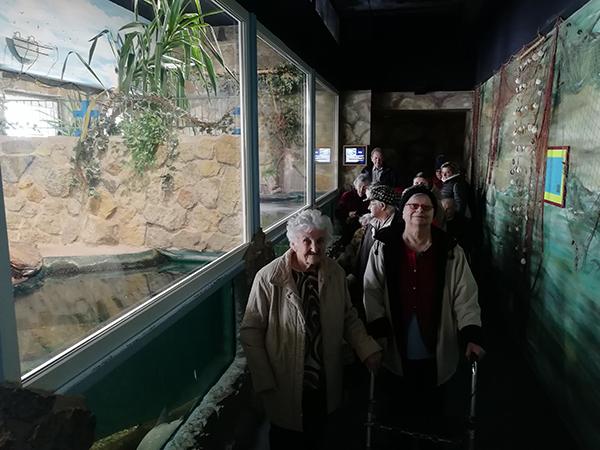 Ausflug ins Aquarium