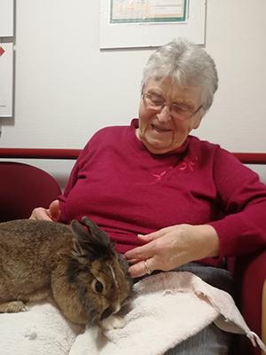 Seniorin mit Kaninchen